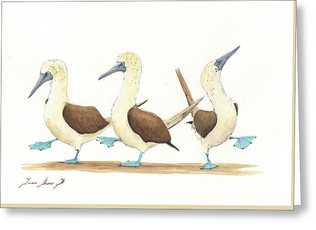 Three Blue Footed Boobies Greeting Card by Juan Bosco
