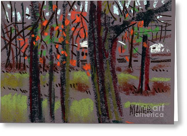 Thru The Trees Greeting Card by Donald Maier