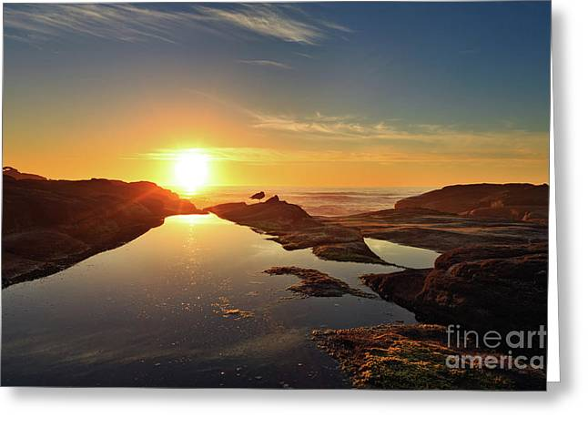 Tidal Pools Greeting Card by Beve Brown-Clark Photography