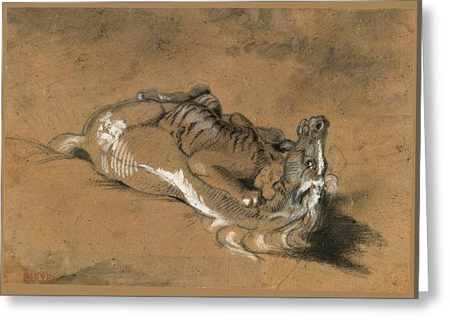 Tiger Attacking A Horse Greeting Card by Antoine-Louis Barye