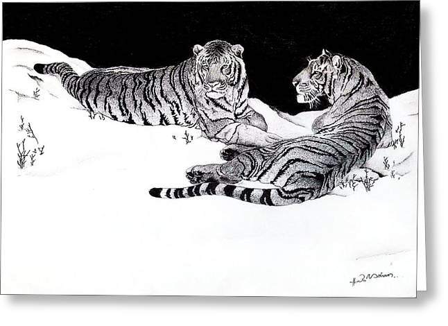 Tigers In The Snow Greeting Card by Hari Mohan