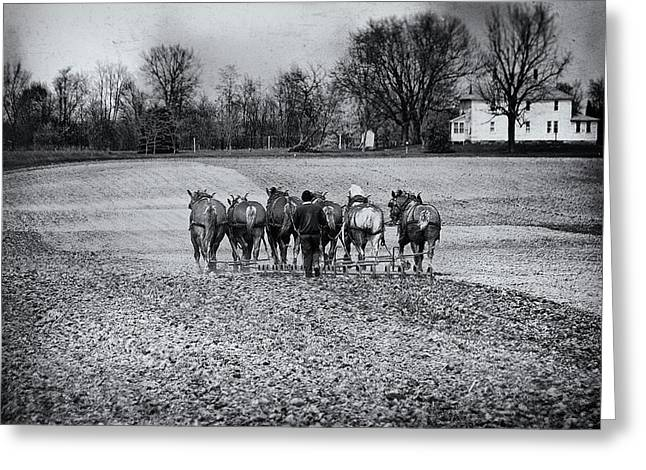 Tilling The Fields Greeting Card