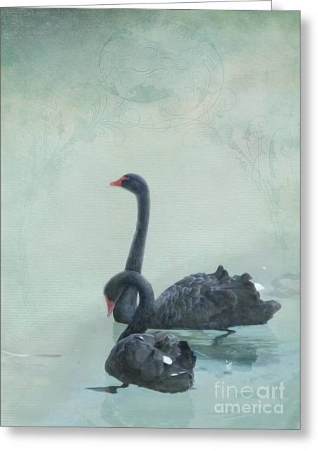 Black Swans Greeting Card by Cindy Garber Iverson