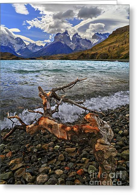 Torres Del Paine 17 Greeting Card
