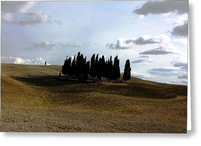 Toscana Greeting Card by Pat Purdy