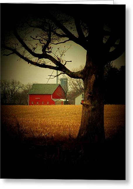 Tree And Barn Greeting Card by Michael L Kimble