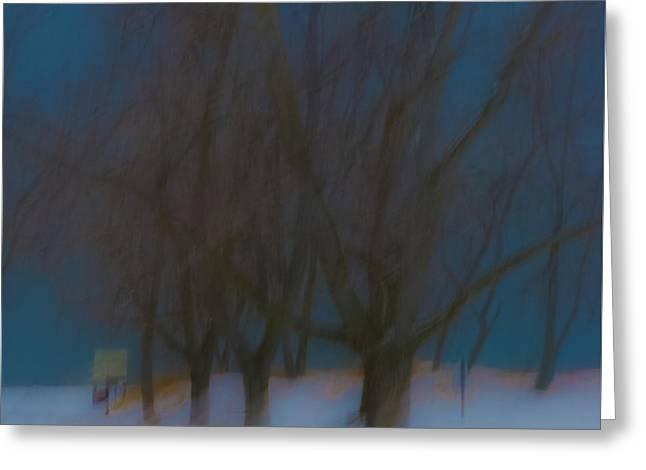 Tree Dreams Greeting Card