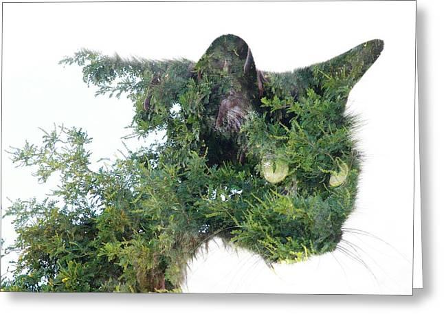 Tree Cat Greeting Card
