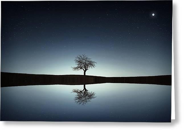 Tree Near Lake At Night Greeting Card by Bess Hamiti