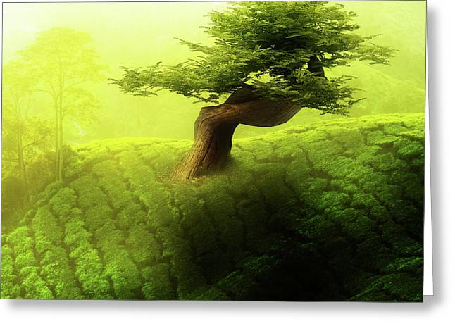 Tree Of Life Greeting Card by Mo T
