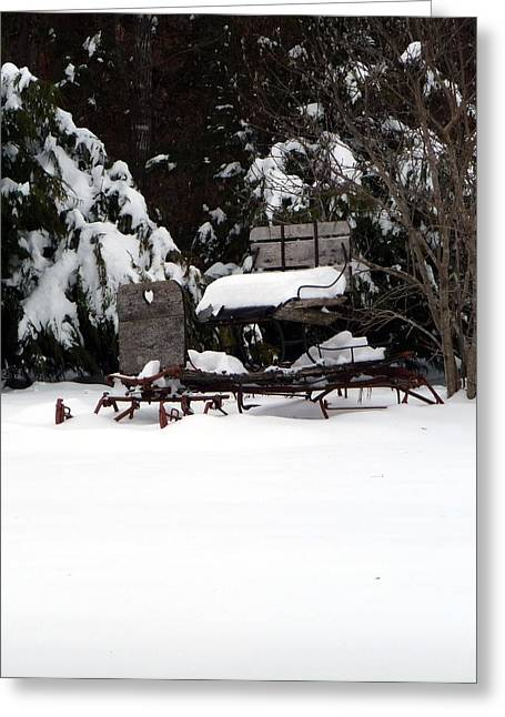 Greeting Card featuring the photograph Tricia's Sleigh by Joel Deutsch