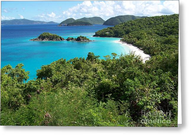 Greeting Card featuring the photograph Trunk Bay by Carol  Bradley