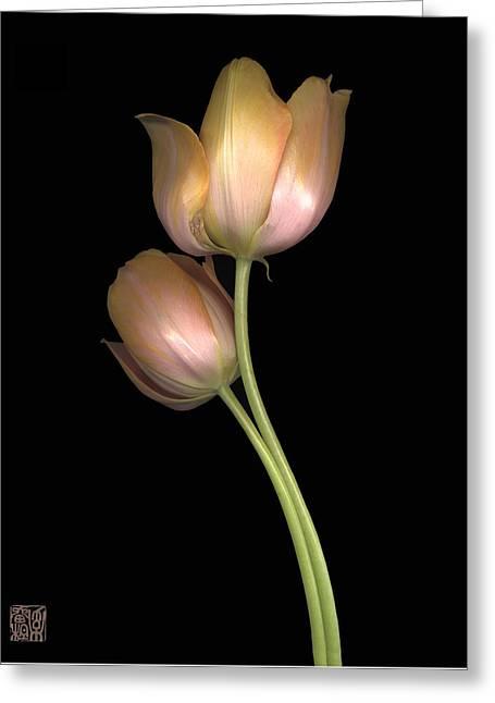 Tulip Greeting Card by Lloyd Liebes
