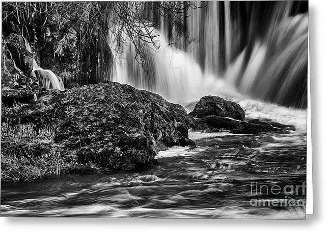 Tumwater Falls Park#1 Greeting Card