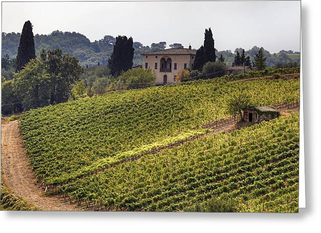 Wine Vineyard Greeting Cards - Tuscany Greeting Card by Joana Kruse