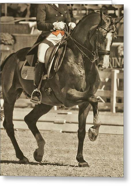 Greeting Card featuring the photograph Ultimate Dressage by Dressage Design