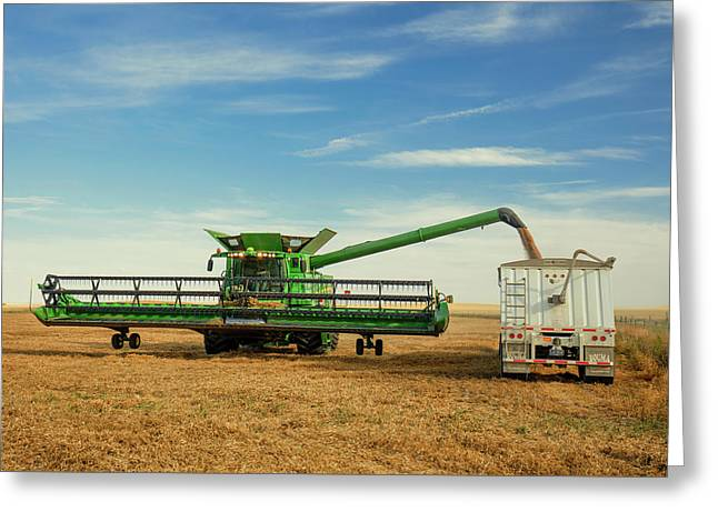Unloading Chickpeas Greeting Card by Todd Klassy