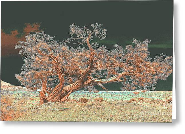 Greeting Card featuring the photograph Unusual Tree - Digital Painting by Merton Allen