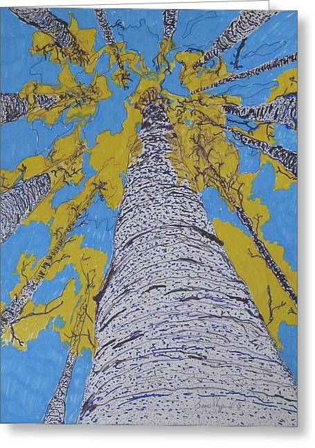 Up At Birch Greeting Card by James SheppardIII