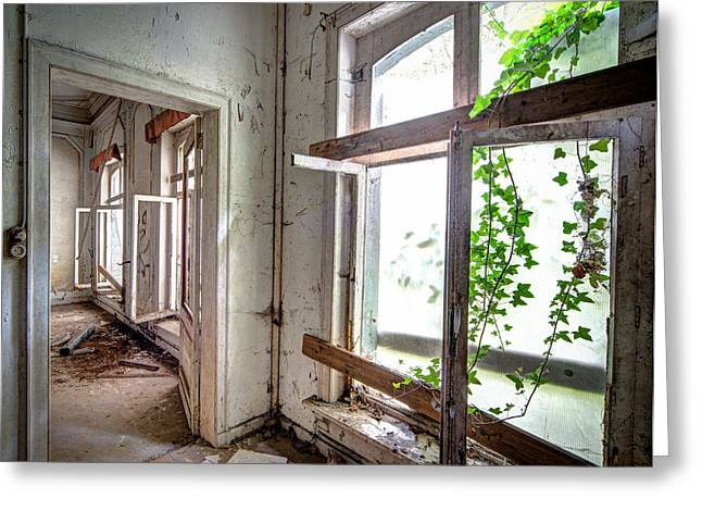 Urban Decay Nature Takes Over - Abandoned Building Greeting Card
