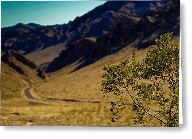 Valley Of Fire Nevada Greeting Card by Patrick  Flynn