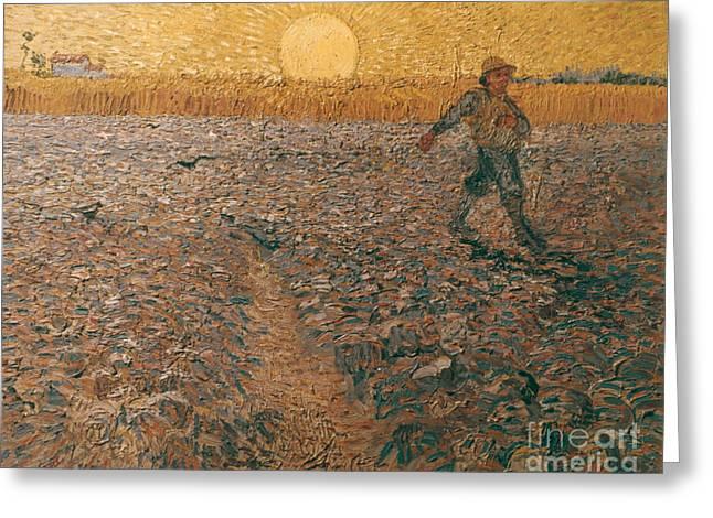 Van Gogh: Sower, 1888 Greeting Card by Granger