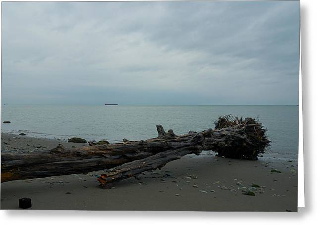 Greeting Card featuring the photograph Vancouver Tower Beach  by Steven Richman