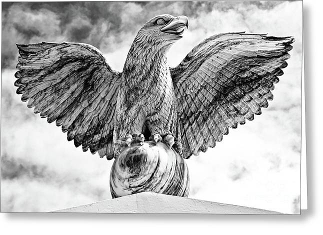 Greeting Card featuring the photograph Victorious Eagle Of Marble by Yurix Sardinelly