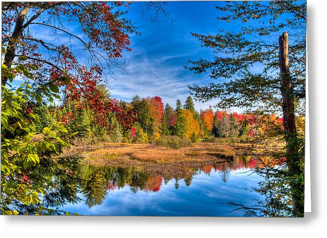 View From The Lock And Dam Trail Greeting Card by David Patterson