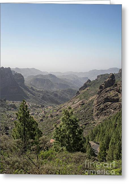 View On Gran Canaria Greeting Card by Patricia Hofmeester