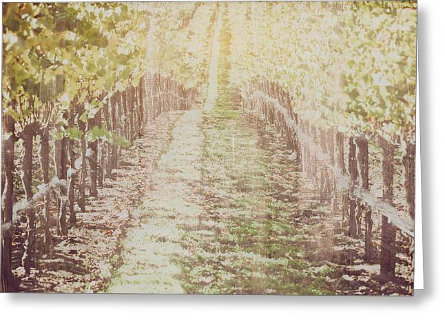 Vineyard In Autumn With Vintage Film Style Filter Greeting Card