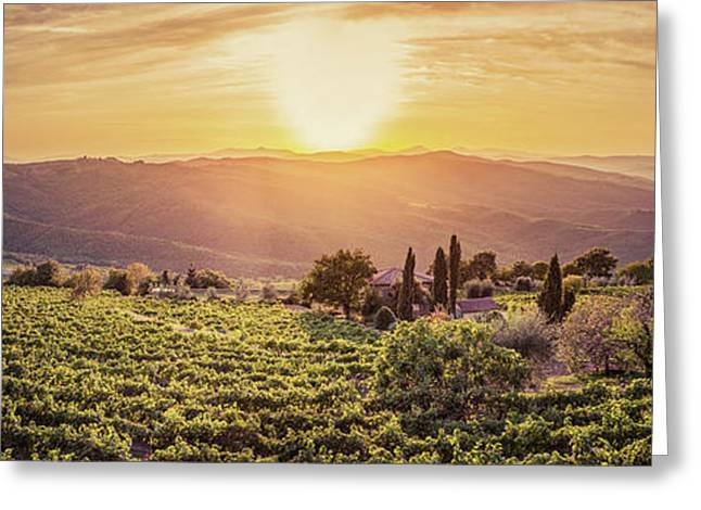 Vineyard Landscape Panorama In Tuscany, Italy. Wine Farm At Sunset Greeting Card by Michal Bednarek