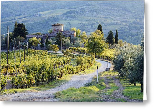Chianti Greeting Cards - Vineyards and Farmhouse Greeting Card by Jeremy Woodhouse
