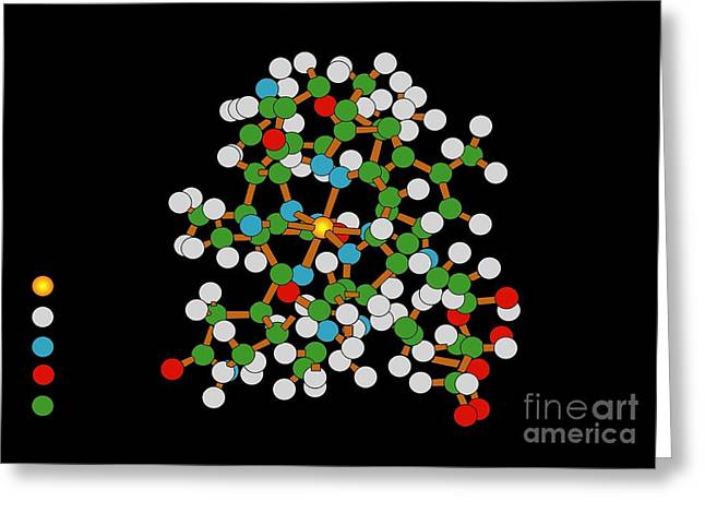 Vitamin B12 Molecule Greeting Card
