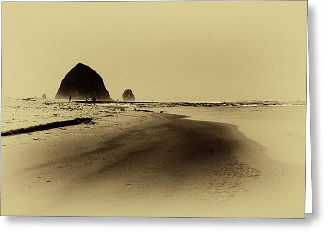 Walking The Beach Greeting Card by David Patterson