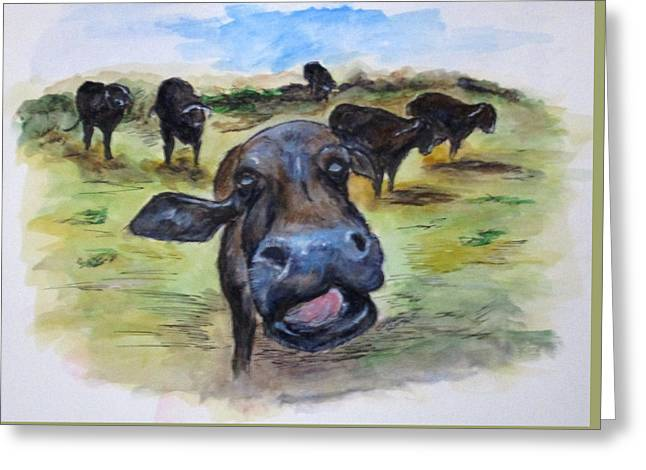 Water Buffalo Kiss Greeting Card