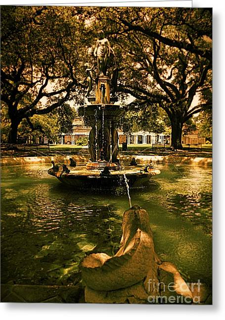 Water Fountain Greeting Card by Janice Spivey