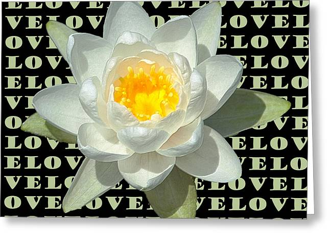 Water Lily Love Greeting Card