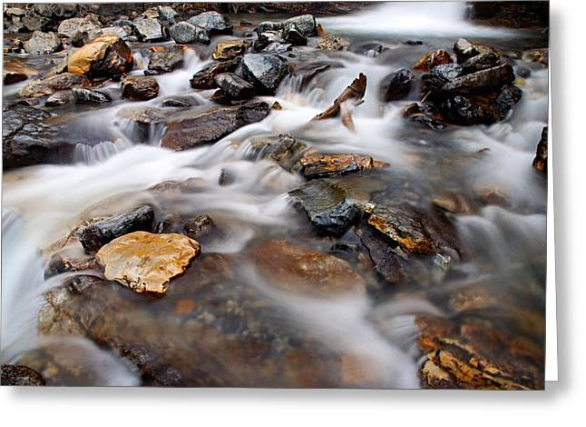 Alberta Water Falls Greeting Cards - Water on the Rocks Greeting Card by Larry Ricker
