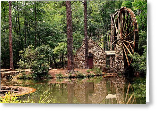 Water Wheel Greeting Card by Jason Blalock