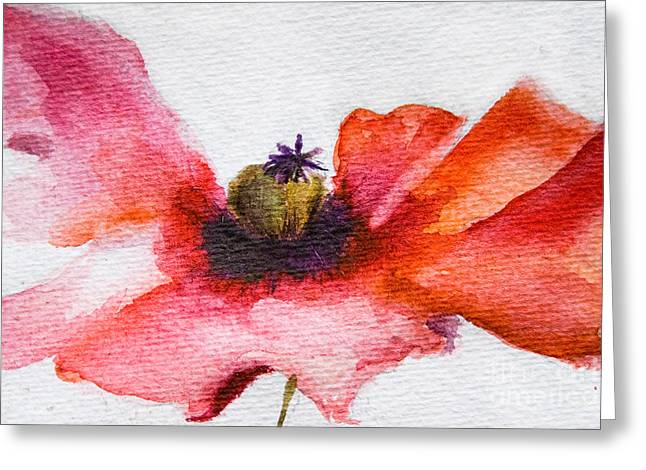Watercolor Poppy Flower Greeting Card