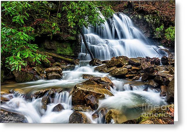 Waterfall And Rhododendron Greeting Card