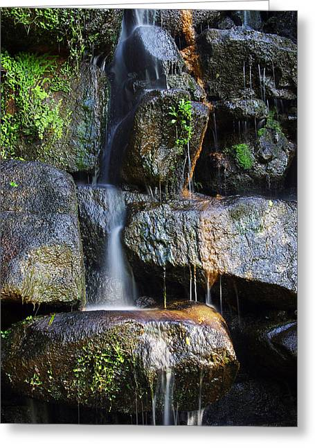 Fresh Green Photographs Greeting Cards - Waterfall Greeting Card by Carlos Caetano
