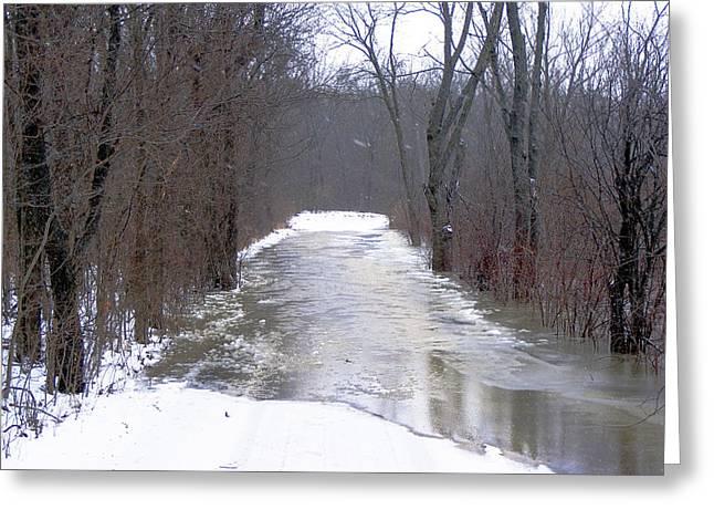 Watery Road Greeting Card by Cindy Yeakel