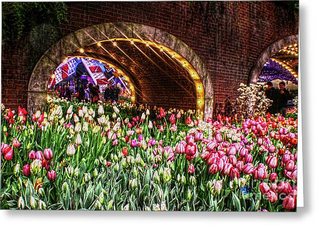 Welcoming Tulips Greeting Card by Sandy Moulder