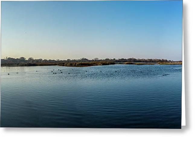 Wetlands Panorama  Greeting Card