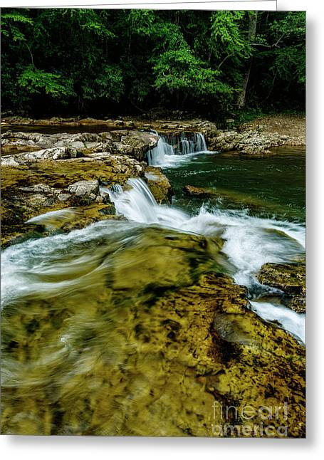 Whitaker Falls In Summer Greeting Card