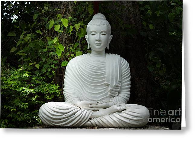 White Buddha Greeting Card by Honey Bee