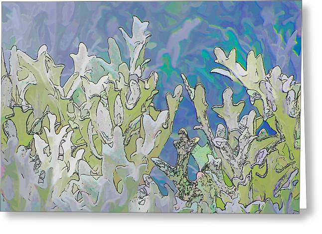 White Forest 4 Greeting Card by Michael Taggart II