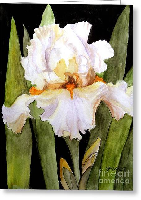 White Iris In The Garden Greeting Card by Carol Grimes